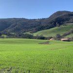 Wysoki poziom funkcjonowania gospodarstwa rolnego